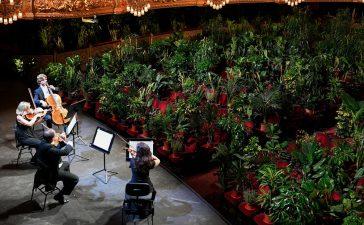 VIDEO: El Liceu de Barcelona da un concierto ante 2.292 plantas