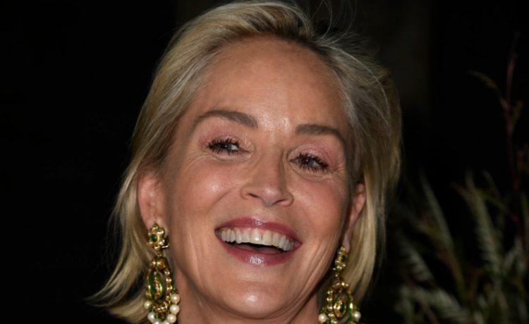 """""""Fue fabuloso"""": Sharon Stone confesó cuál actor le ha dado el mejor beso en escena"""